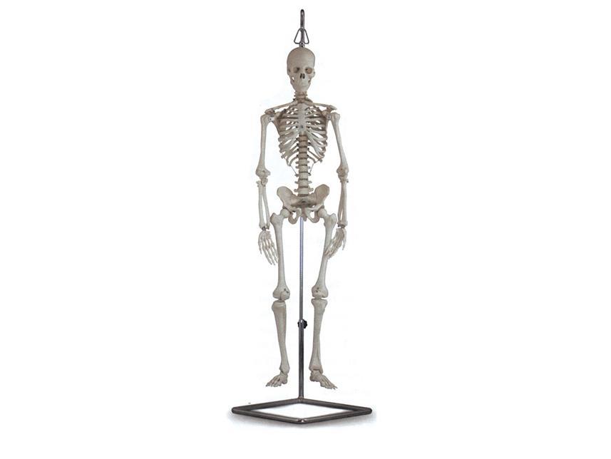mini kostur