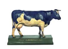 model - krava oldenburger