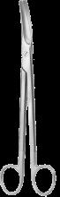 parametrium-skare-09501
