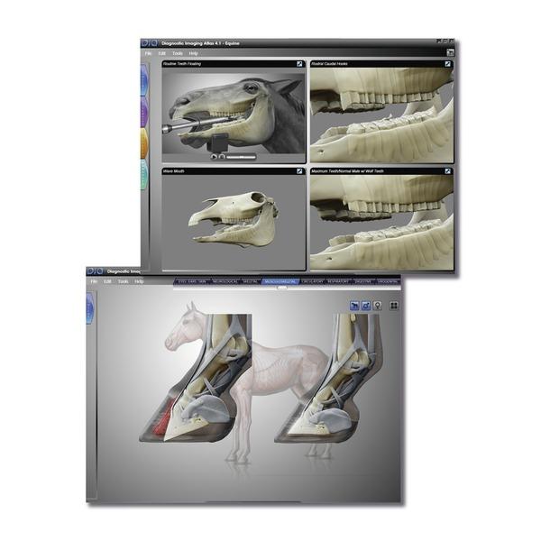 softver-za-dijagnostiku-medicinskih-stanja-kod-konja-atlas